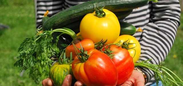 Fruits and veggies to plant in your Cape garden this summer